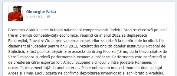 maipluarea-economiei-din-arad-falca-facebook