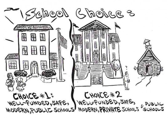 School and Political Choices